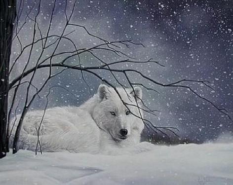 animaatjes-wolven-57126