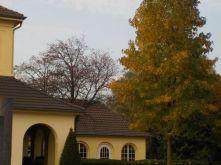 friedhof-im-oktober-039
